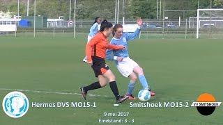 Samenvatting Hermes DVS MO15-1 - Smitshoek MO15-2