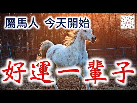 【屬馬人接福】你家裡人有屬馬的嗎,請為他們轉發,今天開始【好運一輩子】