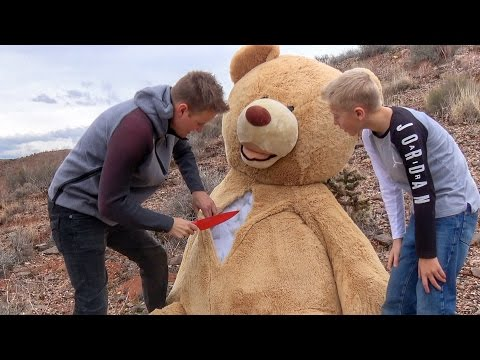 What's inside the World's Largest Teddy Bear?