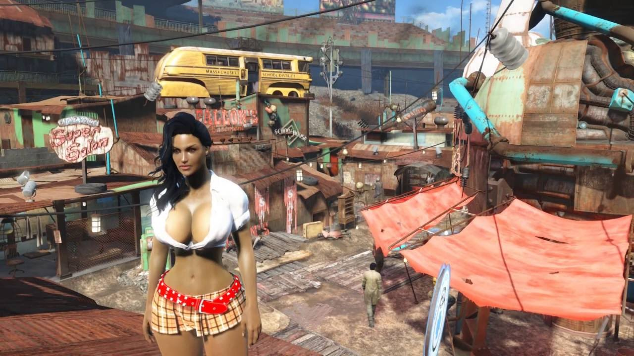 Fallout  Female Character Build