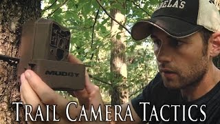 trail cameras for public land deer hunting