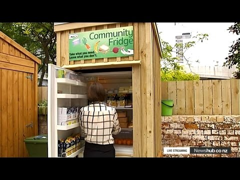 The Community Fridge Reducing Food Waste And Feeding The
