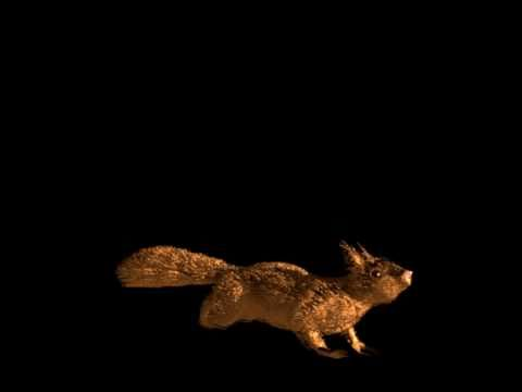 Squirrel - Blender 3d animation ( wiewiórka- animacja 3d )