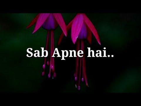 Very true heart touching lines   Best hindi lines   Sab apne hai