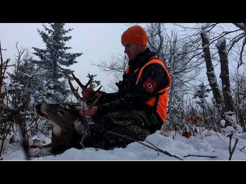 THE BIG WOODS | Hunting From A Tracker's Perspective