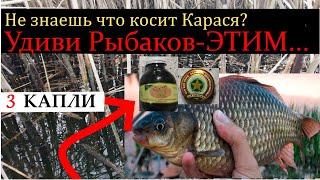 ДОКАЗАНО Будет Косить КАРАСЯ Шикарная насадка на Карася и Карпа Ароматизатор для рыбалки Рыбалка