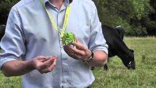 sterimatic protect a bottle for single dose livestock injections aug 2011