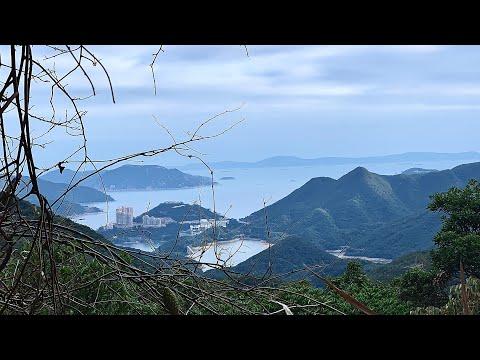 2020 02 08:週末香港行山大潭郊野公園Hiking Mount Butler Jardine's Lookout