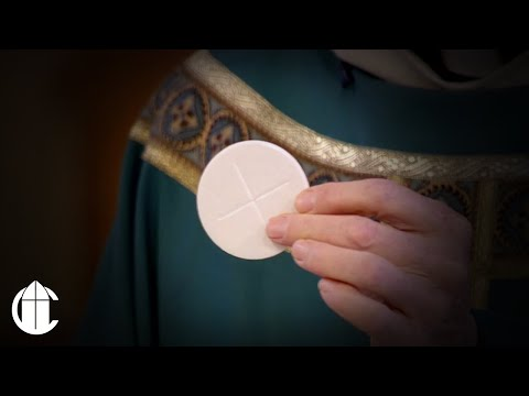 Catholic Mass: 11/14/20   Saturday of the Thirty-Second Week in Ordinary Time