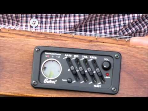 Wormy Chestnut Electric Baritone