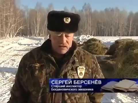 Заказники. Свердловская область.
