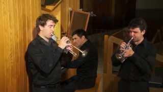 Johann Christoph Pezel, Sonata en do / in C no 69