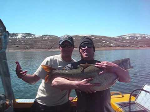 Releasing Big Lake Trout With Bluemesafishing.com