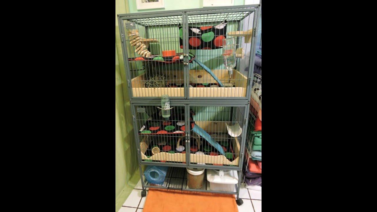 chinchilla cage - photo #43