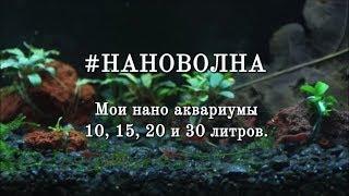 #НАНОВОЛНА Мои нано аквариумы 10, 15, 20 и 30 литров.