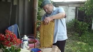 Цветочный майский мед(, 2016-06-05T14:02:18.000Z)