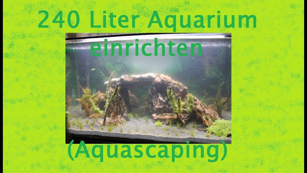 240l Aquarium Einrichten Aquascaping Youtube