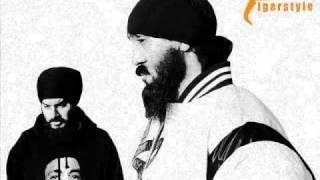 Wisin y Yandel - MiraLa bien ft Labh Janjua ( TigerStyle Bhangra Remix )
