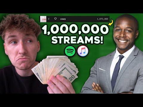 I Spent $1,500 on a Pro Music Marketer to Promote My Song! This is What Happened..