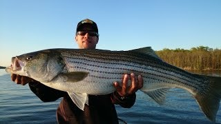 Delaware river striper fishing with poppers watch the video for Delaware river striper fishing