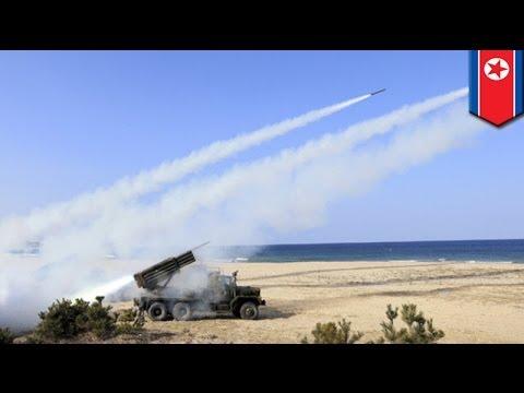 North Korea fires 30 short-range missiles into Sea of Japan
