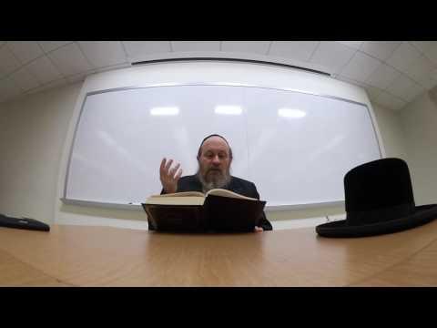 Rav Moshe Weinberger Likutey Halachot #1