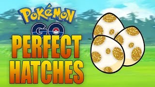 PERFECT EGG HATCHES in Pokemon GO!