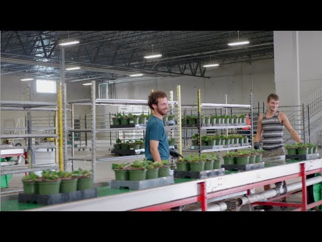 Green Circle Growers Operations Careers