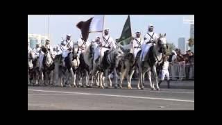"""Телеканал """"Домашние животные"""" - Караульная служба катарского эмира"""