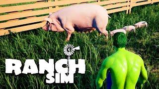 Aus dem SCHWEIN sind KLEINE SCHWEINE rausgefallen - Ranch Simulator Deutsch