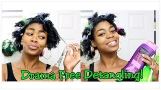 Drama Free Detangling! - (Talk Thru & Run Thru) - Wash & Go Breakdown DEMO- 4C Natural Hair