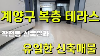 작전동 신축빌라 복층 테라스 매매 분양 | 신혼집 애완…