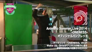 Animelo Summer Live 2014-ONENESS-オフィシャルパンフレットに 「Wake ...
