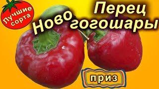 Сладкий перец Ново гогошары (ратунда, лучшие сорта сладкого перца)