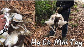 Ná Cao Su || Lạc Vào Vườn Cò Bắn Mỏi Tay ||