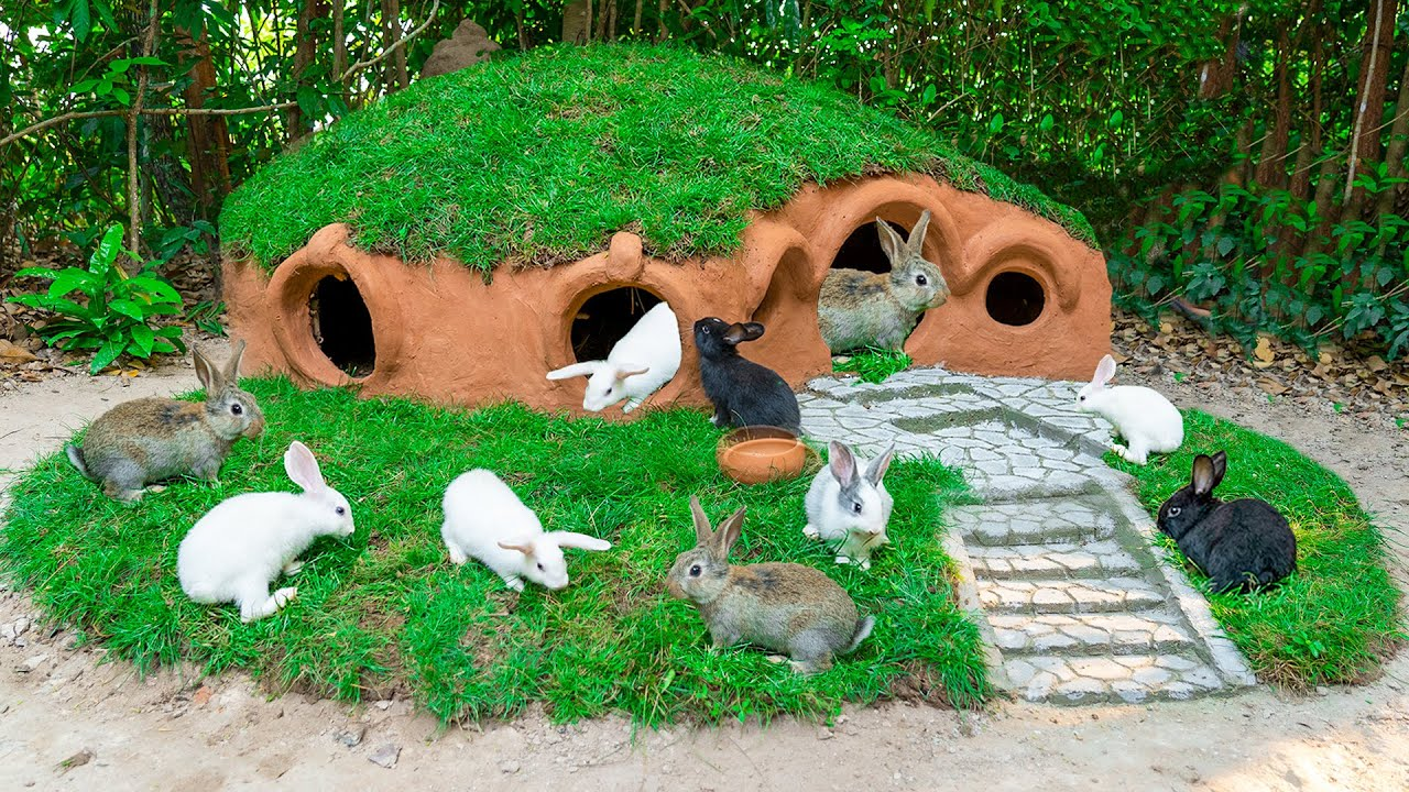 Build Natural House For Rescued Rabbits In Hobbit House Style