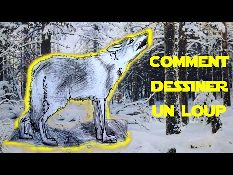 leep comment dessiner un loup youtube. Black Bedroom Furniture Sets. Home Design Ideas