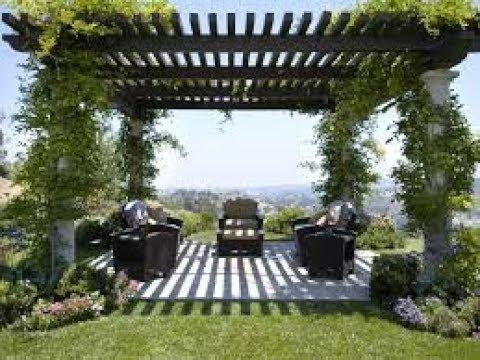 dekorasi taman tanaman merambat rumah minimalis - youtube