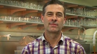 Food Science and Technology research ensuring healthy food supply for the future