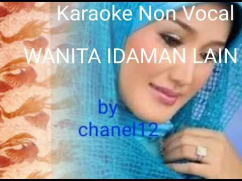 karaoke non vocal