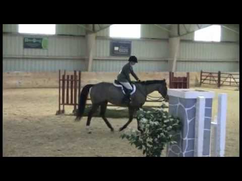 Stephanie On Eddie - Adult Equitation - The Barracks, Feb. 2012.flv