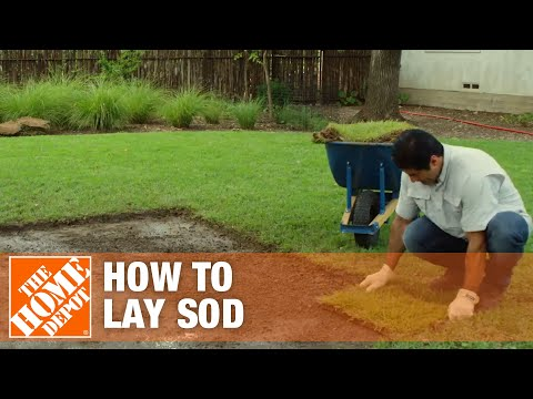Laying Sod & How To Prepare Soil For Sod | The Home Depot