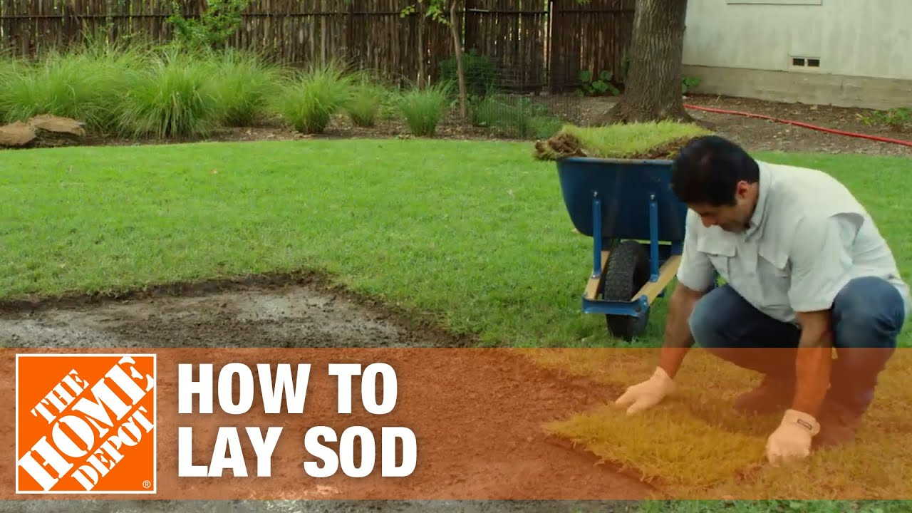 Laying Sod How To Prepare Soil For Sod The Home Depot Youtube