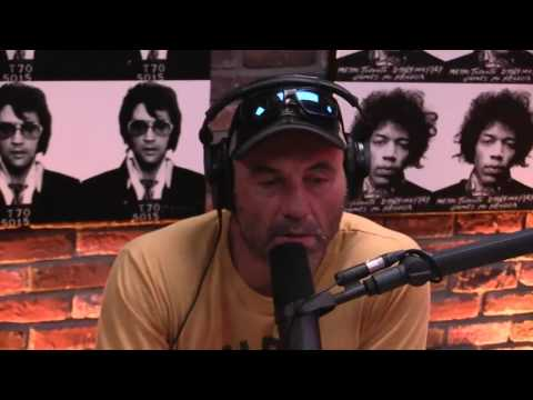 Dana McKenzie - Joe Rogan Was Contacted by Scientology, Reads Their Statement