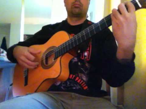 "Ozzy Osbourne ""Bark at the Moon"" (acoustic) Ben Woods flamenco guitar"