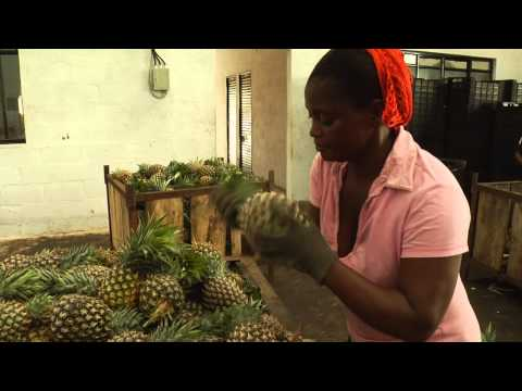 Trading stories: Sierra Leone