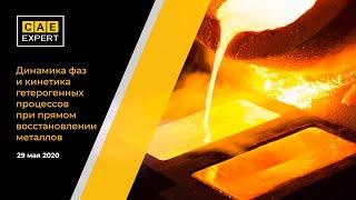 Динамика фаз и кинетика гетерогенных процессов при прямом восстановлении металлов