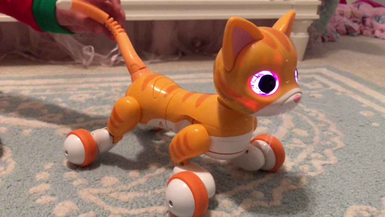 Robot Cat Toy >> My New Smart Cat Robot Toy Zoomer Kitty Review Youtube