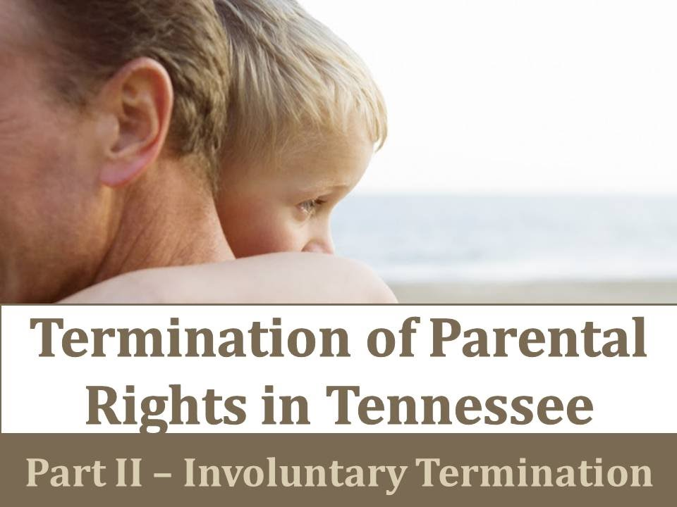parents are right Parents' rights parents' rights provide feedback print share rss families have the primary responsibility for the upbringing, protection and development of.