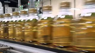 Kunjungan ke Pabrik Nu Green Tea